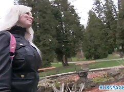 T sexardess سکس لباس توری سازمان دیده بان جنسیت